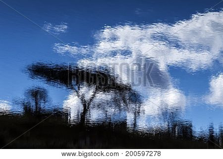 Tree Blue Cloudy Sky Abstract Reflection Off Dam Water