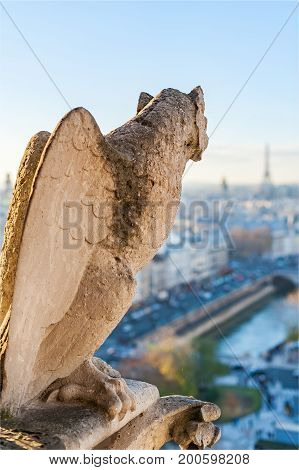 Gargoyle with wings looking at Paris skyline, France