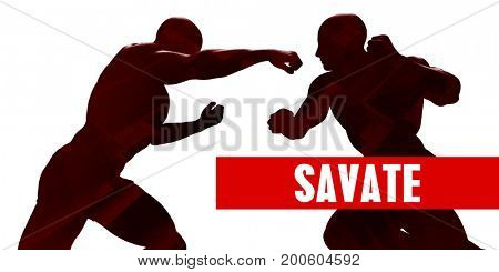 Savate Class with Silhouette of Two Men Fighting