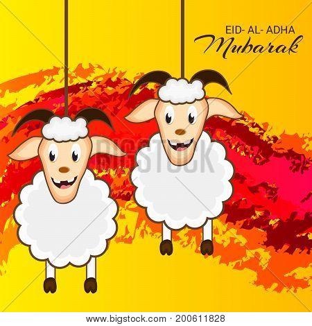 Eid Al Adha_20_aug_44
