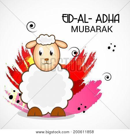Eid Al Adha_20_aug_48