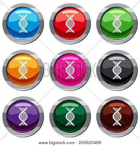 DNA strand set icon isolated on white. 9 icon collection vector illustration