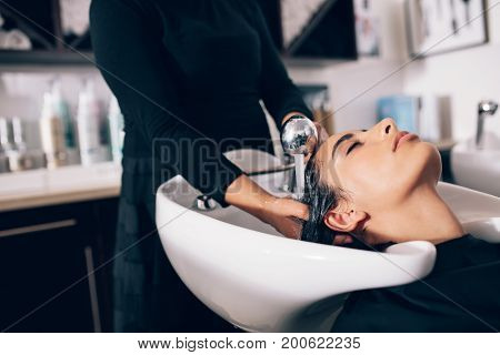 Closeup of hairdresser giving hair wash service to a customer at the salon. Woman getting hair spa treatment done at hair salon