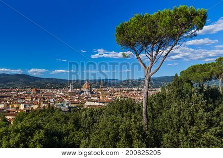Florence cityscape - Italy - architecture background