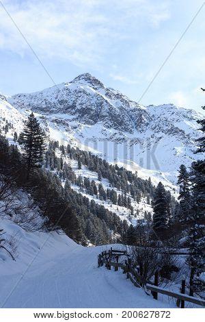 Wintery Snowy Path With Trees And Mountain In Stubai Alps Mountains, Austria