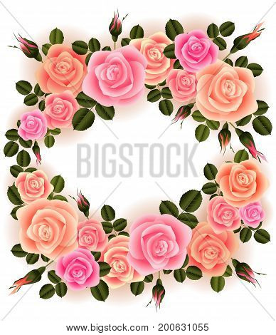 Illustration of greeting or invitation card template with rose flowers