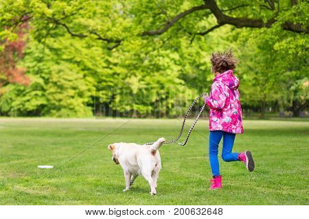 Little girl with labrador retriever on walk in park. Child is running on green grass with dog - outdoor in nature. Pet, domestic animal and people concept.