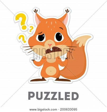 Isolated puzzled squirrel with question marks on white background.
