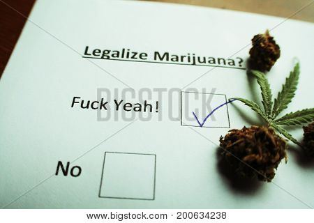 Legalize Marijuana Ballot With Weed & Bud High Quality