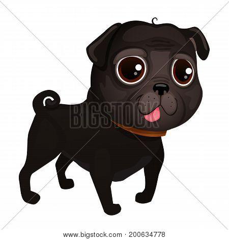 Black pug. Illustration of dog pug breed. Vector Illustrative Portrait of Pug Dog. Pug of cartoon style.