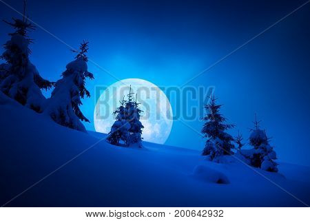 Night Carpathian Landscape