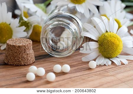 A bottle of homeopathic globules with chamomile flowers in the background