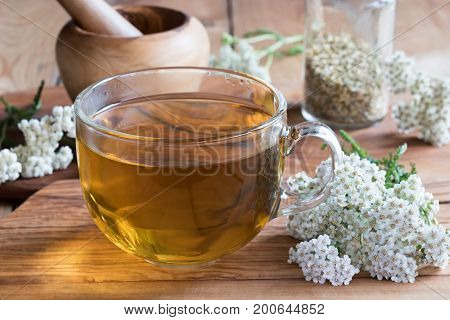 A cup of yarrow tea with fresh yarrow flowers in the foreground