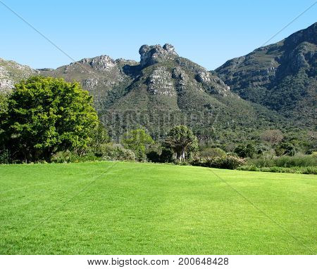 FROM CAPE TOWN, SOUTH AFRICA,  THE KIRSTENBOSCH NATIONAL BOTANICAL GARDENS, NESTLED AT THE FOOT OF TABLE MOUNTAIN, WITH A GREEN FIELD IN THE FORE GROUND