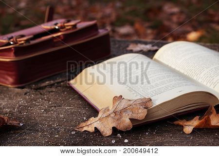 Autumn mood. Open book with leaves on the bench in the park, selective focus