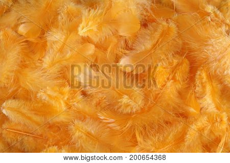 Background - small yellow plumes situated irregularly