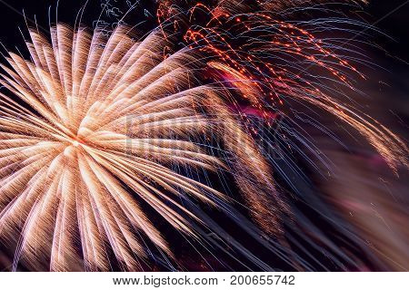Colorful fireworks, as pink peony and sparks. Colored firework holiday background, wallpaper or banner design