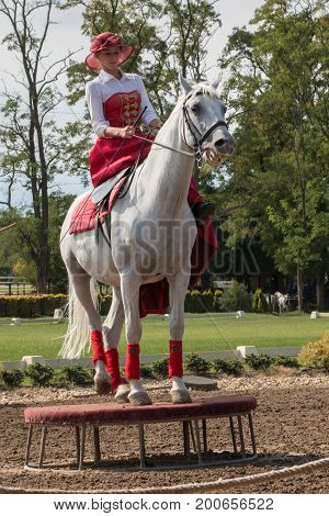 DOMONY, HUNGARY - AUGUST 6, 2017: Amazon riding a white horse at a show at Lazar Lovaspark in Hungary