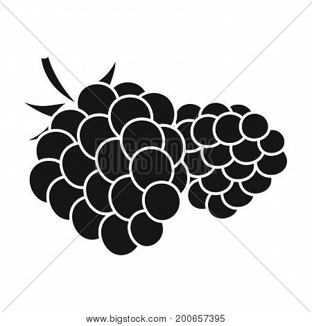 Raspberry, sweet fruit.Fruit single icon in black style vector symbol stock illustration .
