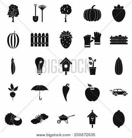 Collecting vegetables icons set. Simple set of 25 collecting vegetables vector icons for web isolated on white background