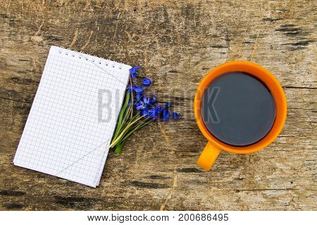 Cup Of Coffee With Notepad And Blue Scilla Flowers On Wooden Desk