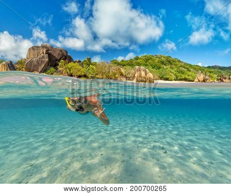 Snorkeling woman exploring beautiful ocean sealife, under and above water photography. Travel lifestyle, water sport outdoor activities, swimming and snorkeling on summer beach holidays.
