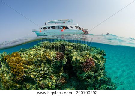 Small safari boat with snorkelists ready to jump into the water. Beautiful split shot under and above water. Travel lifestyle, water sport outdoor activities, swimming and snorkeling
