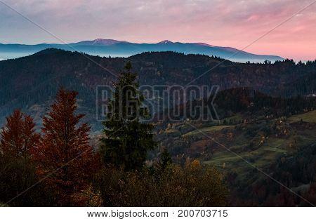 Gorgeous Hazy Morning In Mountains