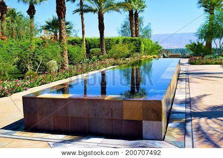 Contemporary style reflection pool surrounded by Palm Trees and lush plants taken at a courtyard in a residential garden