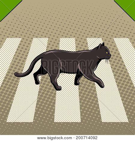 Black cat crosses the road pop art style vector illustration. Bad sign. Comic book style imitation