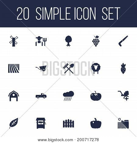 Collection Of Vegetable, Wooden Barrier, Grower And Other Elements.  Set Of 20 Agriculture Icons Set.