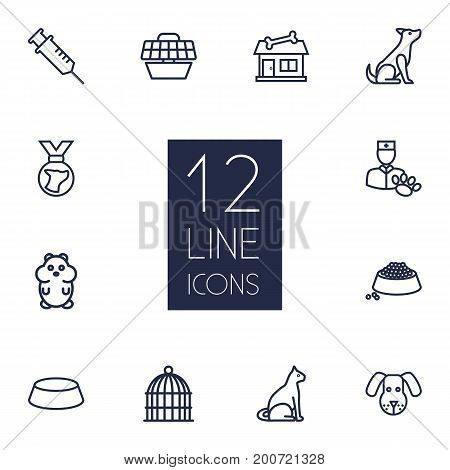 Collection Of Sitting, Hamster, Shop And Other Elements.  Set Of 12 Pets Outline Icons Set.