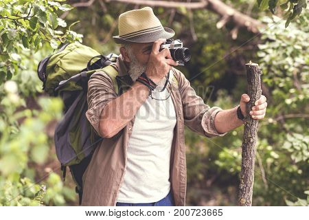 Cheerful mature male tourist photographing wild nature during his journey. He is standing and leaning on wooden stick