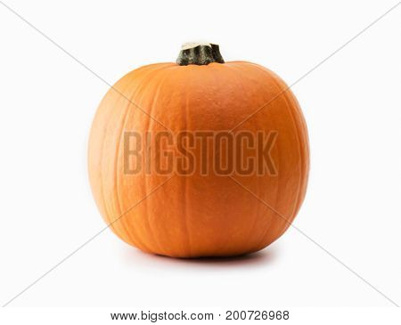Nice shaped pumpkin isolated on white.