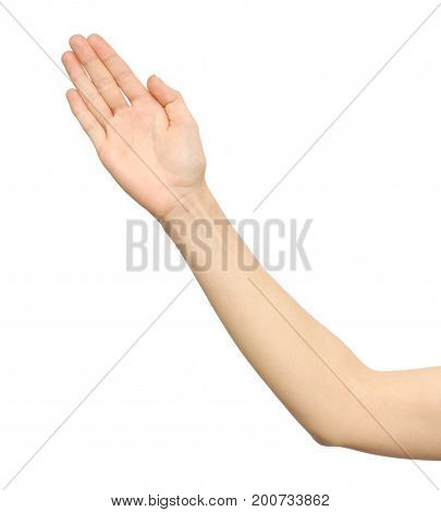 Stretched Hand Of Woman Isolated