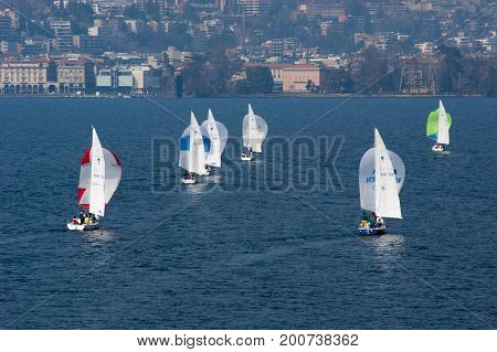 Sailboat Regatta Race With Colorful Spinnaker Sails At Lake Lugano
