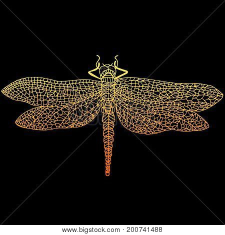 Decorative beautiful graceful dragonfly stypunk style rusty color outline cartoon insect isolated on black background. A beautiful cyberpunk card. Vector hand drawn illustration.