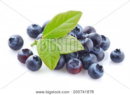 Blueberry with leaves