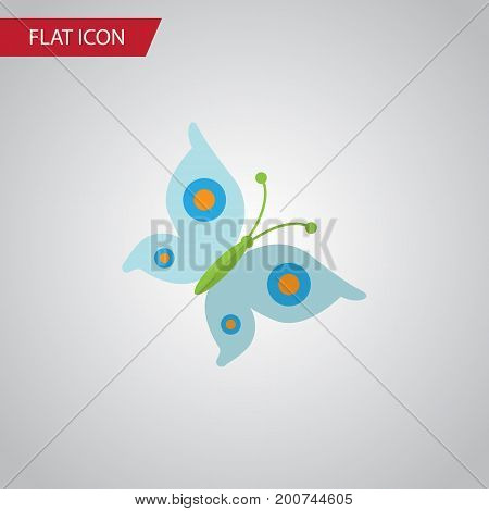 Monarch Vector Element Can Be Used For Butterfly, Monarch, Moth Design Concept.  Isolated Butterfly Flat Icon.