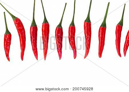 red hot chili peppers, popular spices concept - vertically stacked row of pods of the red hot chili peppers on a isolated background, top view, flat lay, free space for your text