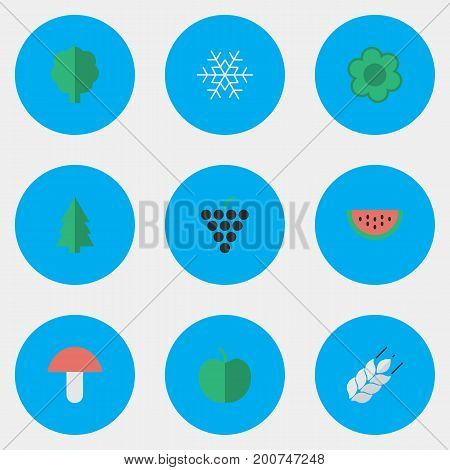 Elements Melon, Wood, Flake Of Snow And Other Synonyms Snow, Berry And Wineglass.  Vector Illustration Set Of Simple Horticulture Icons.