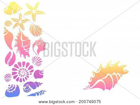 Color template of silhouettes of sea shells. Starfish shell conch spiral helix. Place for text. Vector for greeting card wallpaper background. Set isolated and grouped for easy editing.
