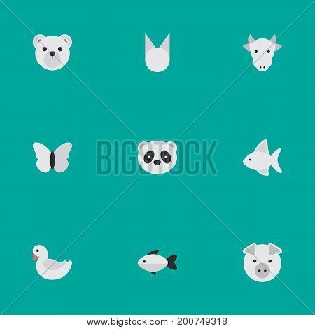 Elements Piggy, Moth, Kine And Other Synonyms Seafood, Perch And Milk.  Vector Illustration Set Of Simple Animals Icons.