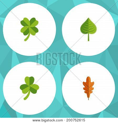 Flat Icon Foliage Set Of Linden, Leafage, Hickory And Other Vector Objects
