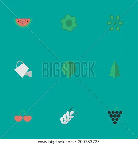 Elements Flower, Berry, Corn And Other Synonyms Watering, Tree And Wood.  Vector Illustration Set Of Simple Gardening Icons.