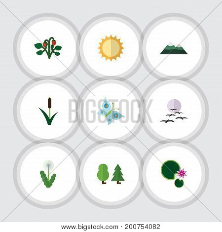 Flat Icon Natural Set Of Peak, Lotus, Monarch And Other Vector Objects