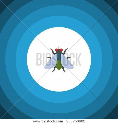 Fly Vector Element Can Be Used For Fly, Insect, Buzz Design Concept.  Isolated Buzz Flat Icon.