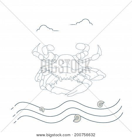 Line Art Styled Vector Illustration: Korean Flower Crab also known as blue Swimmer or Manna crab, Rajungan or Alimasag.