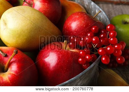 Autumn harvest and thanksgiving card background. Various fruits, rowan, apples, pears in old metal basin and fall leaves on weathered rustic wood closeup