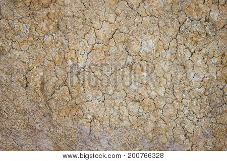 Separate soil or parched ground or cracked ground or desiccated ground. texture background.